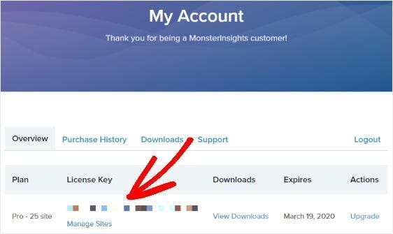 my account monsterinsights
